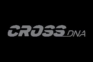 04 CrossDNA